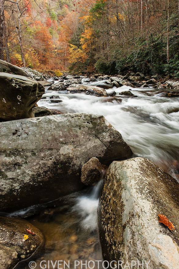 River, Great Smoky Mountains National Park, Tennessee