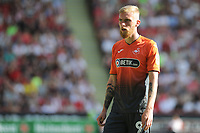 Swansea City's Oli McBurnie during the Sky Bet Championship match between Sheffield United and Swansea City at Bramall Lane, Sheffield, England, UK. Saturday 04 August 2018