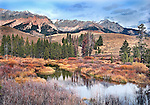 wetland below Boulder Mt. Sun Valley Idaho USA