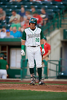 Fort Wayne TinCaps Agustin Ruiz (20) during a Midwest League game against the Peoria Chiefs on July 17, 2019 at Parkview Field in Fort Wayne, Indiana.  Fort Wayne defeated Peoria 6-2.  (Mike Janes/Four Seam Images)
