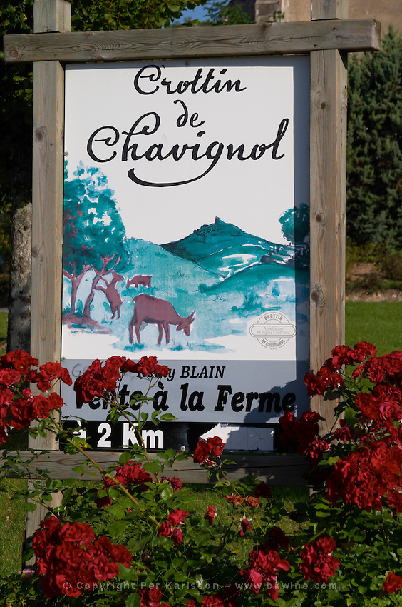 Poster for crottin de chavignol goat cheese. Montigny village, Sancerre, Loire, France