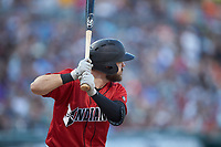 Will Craig (25) of the Indianapolis Indians at bat against the Charlotte Knights at BB&T BallPark on April 27, 2019 in Charlotte, North Carolina. The Indians defeated the Knights 8-4. (Brian Westerholt/Four Seam Images)