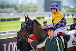 SHA TIN, HONG KONG – December 8: Easy Go Easy Win, ridden by Alexis Badel wins the Fantastic Light Handicap on Longines Hong Kong International Race Meeting at Sha Tin Racecourse in Hong Kong. Michael McInally/Eclipse Sportswire/CSM