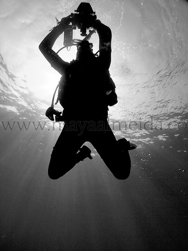 Underwater creative images
