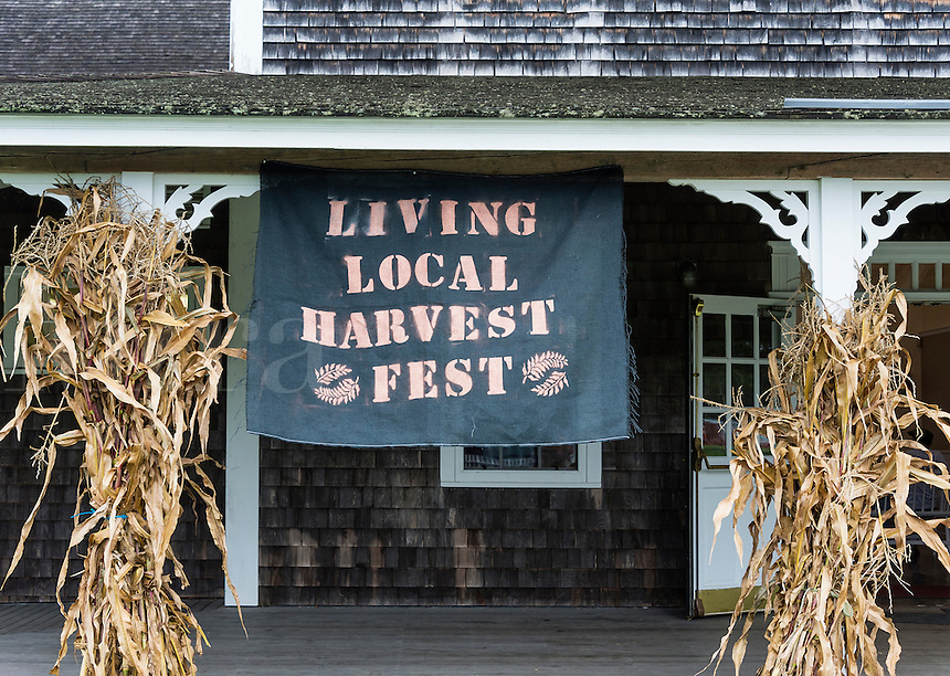 Martha's Vineyard Agriculture Society Living Local Harvest Fest, West, Tisbury, Massachusetts, USA