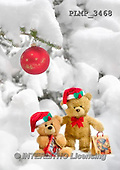 Marek, CHRISTMAS ANIMALS, WEIHNACHTEN TIERE, NAVIDAD ANIMALES, teddies, photos+++++,PLMP3468,#Xa# in snow,outsite,