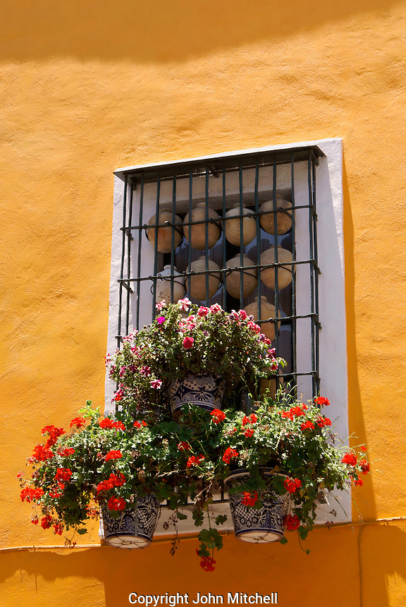 Flower bedecked window in the city of Puebla, Mexico. The historical center of Puebla is a UNESCO World Heritage Site.