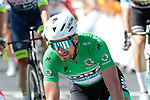 Peter Sagan (SVK) Bora-Hansgrohe 5th place at the end of Stage 3 of the 2019 Tour de France running 215km from Binche, Belgium to Epernay, France. 8th July 2019.<br /> Picture: Colin Flockton | Cyclefile<br /> All photos usage must carry mandatory copyright credit (© Cyclefile | Colin Flockton)