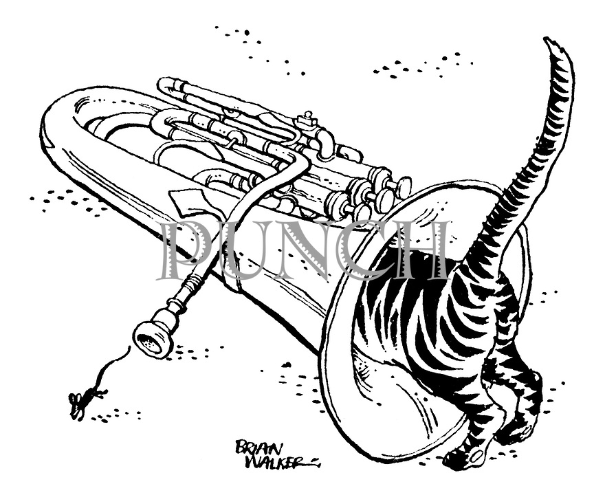 (A cat chases a mouse down the horn of a tuba while it runs out the mouthpiece)