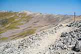 NEW ZEALAND, Nelson Lakes National Park, Trail in the Mountains of Nelson Lake National Park, Ben M Thomas