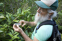 Dr. Steve Montgomery searching for endemic Hawaiian happy-faced spiders in a jungle