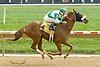 Strategic Hope winning at Delaware Park on 10/3/12