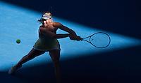 2013 WTA Top 20 Women Players