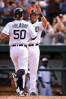 Detroit Tigers Jordan Lennerton high fives Bryan Holaday (50) after a home run during a Spring Training game against the Miami Marlins on March 25, 2015 at Joker Marchant Stadium in Lakeland, Florida.  Detroit defeated Miami 8-4.  (Mike Janes/Four Seam Images)