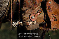 Cowboy boots,spurs,chaps and chinks Cowboys working and playing. Cowboy Cowboy Photo Cowboy, Cowboy and Cowgirl photographs of western ranches working with horses and cattle by western cowboy photographer Jess Lee. Photographing ranches big and small in Wyoming,Montana,Idaho,Oregon,Colorado,Nevada,Arizona,Utah,New Mexico.