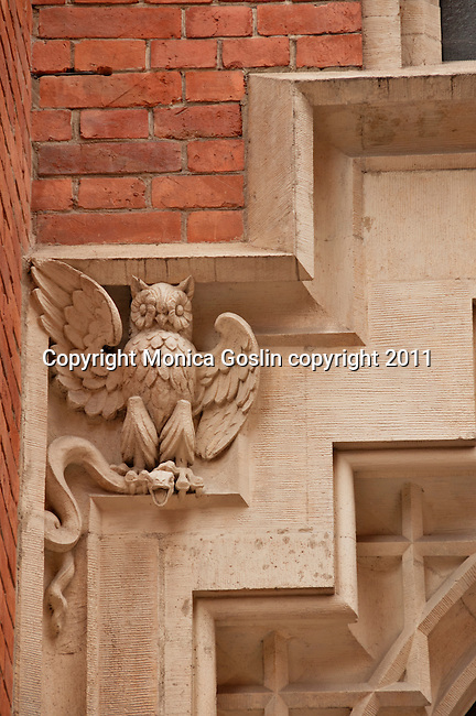 An owl with a snake in its talons, carved into the corner of a window on a building in Krakow, Poland