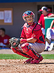9 March 2014: St. Louis Cardinals catcher Tony Cruz looks back to the dugout during a Spring Training game against the Washington Nationals at Space Coast Stadium in Viera, Florida. The Nationals defeated the Cardinals 11-1 in Grapefruit League play. Mandatory Credit: Ed Wolfstein Photo *** RAW (NEF) Image File Available ***