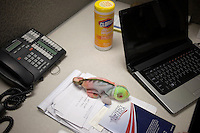 A lizard-shaped stuffed animal rests on the reception desk at the Newt Gingrich New Hampshire campaign headquarters in Manchester, New Hampshire, on Jan. 7, 2012. Gingrich is seeking the 2012 Republican presidential nomination.