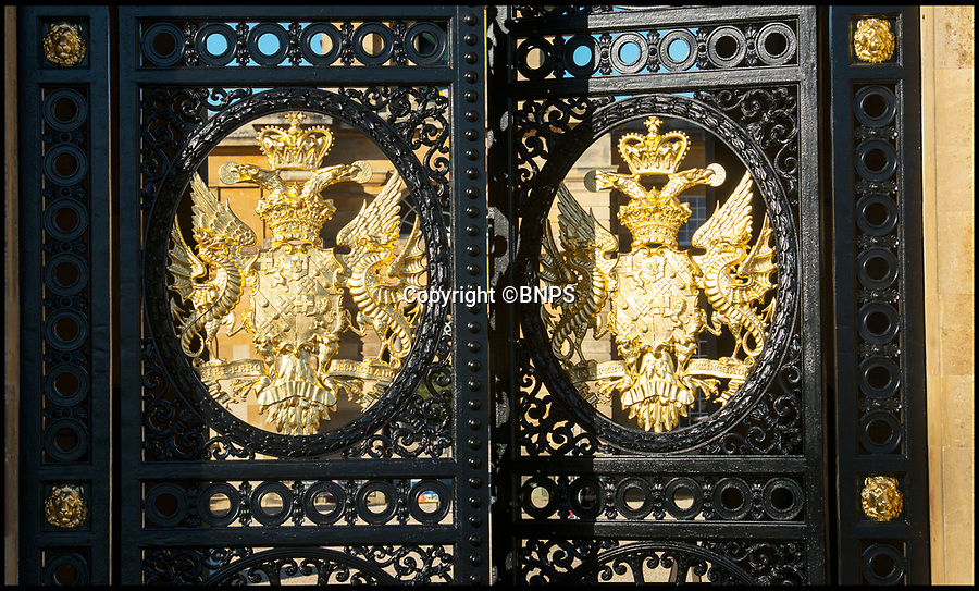 BNPS.co.uk (0102 558833)<br /> Pic: PhilYeomans/BNPS<br /> <br /> Golden crests of the Dukes of Marlborough.<br /> <br /> Golden Gates restored to their former glory.<br /> <br /> The majestic gates which guard the entrance to Blenheim Palace, Sir Winston Churchill's birthplace, have been given a golden makeover.<br /> <br /> The largest monumental entrance to a private palace in Britain, the massive 20 ft high, 17 tonne gates, installed in 1852, have been painstakingly restored using over 6,000 leaves of 24 carat gold.<br /> <br /> Gilder John Naysmith painstakingly stripped and re-painted the wrought iron and then applied 240 books of gold leaf to the Marlborough coat of arms and crest by hand.
