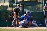 Umpire Brandon Butler and Toronto Blue Jays Owen Spiwak (15) during an instructional league game against the Atlanta Braves on September 30, 2015 at the ESPN Wide World of Sports Complex in Orlando, Florida.  (Mike Janes/Four Seam Images)