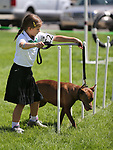 4-H member Vivi Mellow, of Carson City, and her dog Annie run the dog agility course at the Carson City Fair at Fuji Park on Tuesday, July 25, 2017. For more information about the fair, which run through Sunday, go to carsoncitynvfair.com.<br /> Photo by Cathleen Allison/Nevada Photo Source