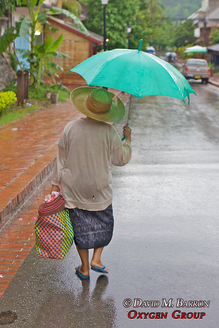Woman In Early Morning Rain