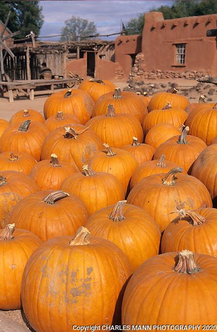 A stack of orange pumpkins creates a colorful setting at a fall festival at Rancho de Las Golondrinas , an hostorical museum near Santa Fe, New Mexico.