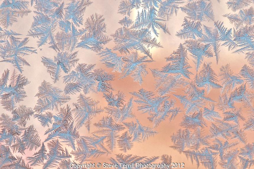 Ice crystals on window in Portland Oregon