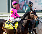 NEW ORLEANS, LOUISIANA - MARCH 23: Sueno in the post parade for the Louisiana Derby on Louisiana Derby Day at the Fair Grounds Race Course in New Orleans, Louisiana. Scott Serio/Eclipse Sportswire/CSM