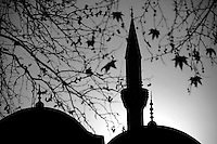 Minaret and dome in the autumn, Turkey