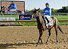 Nicole H winning The Endine Stakes at Delaware Park on 10/13/12