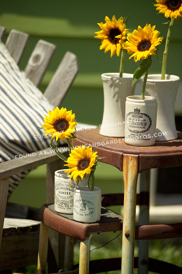 Sunflowers set in individual ceramic crocks sit outside with a book on an old, rusty, folding stepstool, backed by a wooden bench with a blue and white-striped ticking pillow, and a green-painted cottage behind, altogether make for a pleasant, summery, country setting.