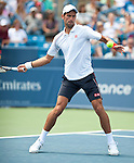 Novak Djokovic (SRB) Advances To Final Over Juan Martin Del Potro (ARG) 6-3, 6-2