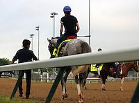 LOUISVILLE, KY - APRIL 27: Lani (Tapit x Heavenly Romance, by Sunday Silence) , shown here being led from the track, worked 3 furlongs in :37.4 in a reluctant manner for jockey Yutaka Take, who will ride him in the Kentucky Derby. Owner Ms. Yoko Maeda, trainer Mikio Matsunaga. (Photo by Mary M. Meek/Eclipse Sportswire/Getty Images)