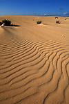 Shadows on the dunes, Corralejo,Fuerteventura, Canary Islands,Spain.