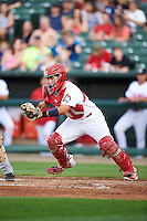 Peoria Chiefs catcher Jose Godoy (27) during a game against the Dayton Dragons on May 6, 2016 at Dozer Park in Peoria, Illinois.  Peoria defeated Dayton 5-0.  (Mike Janes/Four Seam Images)