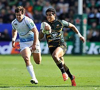 Northampton, England. Ken Pisi of Northampton Saints charges forward during the Heineken Cup Pool 4 match between Northampton Saints and Glasgow Warriors at Franklin's Gardens on October 14, 2012 in Northampton, England.