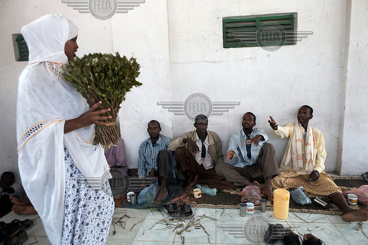 Qat chewers in Hargeisa. Qat is a national addiction in Somaliland and the source of many of the socioeconomic problems affecting the country.