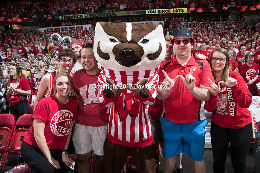 Bucky Badger, Wisconsin Badger Fans | David Stluka Photography