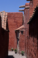 Amérique/Amérique du Sud/Pérou/Arequipa : Rue Toledo - Maison