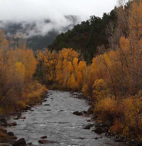 The San Miguel River flows through the fall colors of Colorado near Telluride.