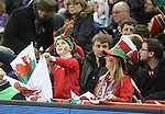 A young Welsh fan waves his flag.<br /> RBS 6 Nations 2014<br /> Wales v France<br /> Millennium Stadium<br /> 21.02.14<br /> <br /> ©Steve Pope-SPORTINGWALES
