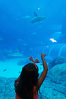 Little girl point to the shark in Sentosa Aquarium, Singapore