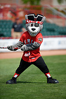 The Erie SeaWolves mascot during a game against the Reading Fightin Phils on May 18, 2017 at UPMC Park in Erie, Pennsylvania.  Reading defeated Erie 8-3.  (Mike Janes/Four Seam Images)