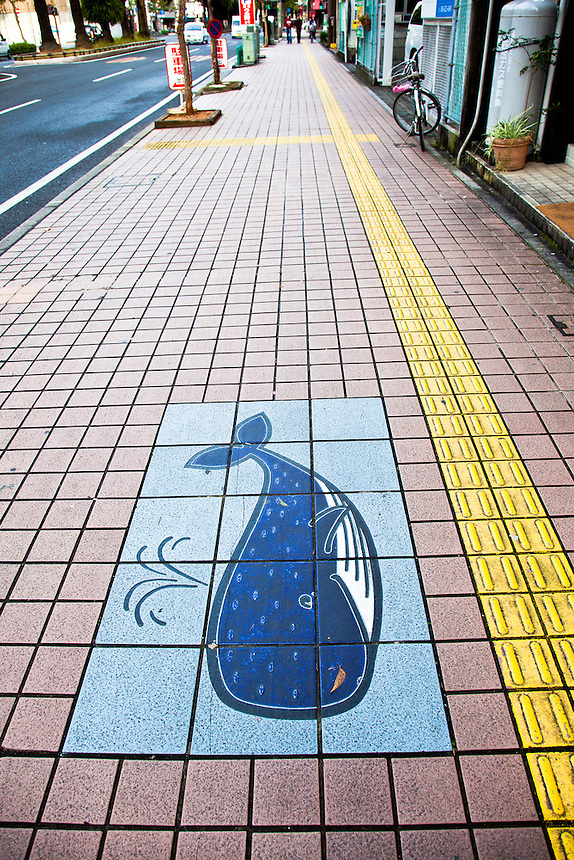 Whale picture on footpath shows the popularity & promotion of the whale in Kochi.