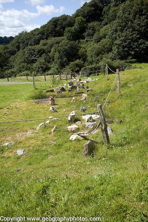 Cheveaux de Frise defence, Castell Henllys iron age village, Pembrokeshire, Wales