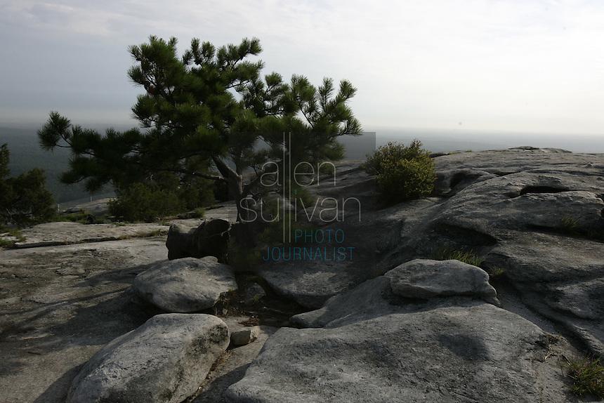 The top of Stone Mountain in Stone Mountain, Georgia.