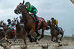 # 1 Dunbar Road wins the Alabama Stakes (Gr. 1) ridden by Jose Ortiz, trained by Chad Brown on Aug. 17, 2019 during racing at Saratoga Race Course in Saratoga Springs, New York. Robert Simmons/Eclipse Sportswire/CSM
