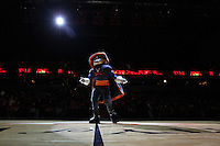 The Virginia mascot stands in the spotlight before the game against Maryland Thursday in Charlottesville, VA. Photo/The Daily Progress/Andrew Shurtleff