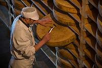Europe/France/Franche-Comté/25/Doubs/ Saint-Antoine: Caves d'affinage du Comté Marcel Petite au  Fort Saint Antoine situé à 1100 mètres d'altitude, ancien fort militaire réaménagé en 1966 en cave d'affinage de comté -  Cathédrale du Comté : 100 000 meules de Comté s'affinent  - Claude Querey Chef des caves  //  France, Doubs, Saint Antoine, fruitere of Comte of Fort Saint Antoine, ripening cellar of Comte Marcel Petite, cheese maker sounding a grindstone  <br /> Auto N°: 2013-103